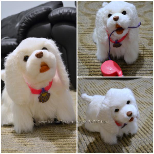 Собака на поводке игрушка как живая