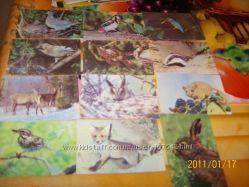 Календарики детские карманные Часть 1