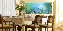 Изготовление и установка домашних и офисных аквариумов на заказ