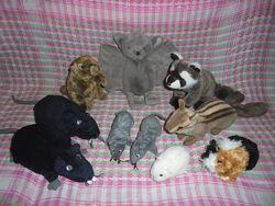 Игрушка мягкая мышь, крыса, сурок, свинка, енот, муравьед, бурундук Hansa