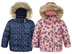 Куртка для девочки Lupilu by Cherokee Германия