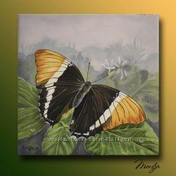 Картина маслом Бабочка холст, масло, 6060см