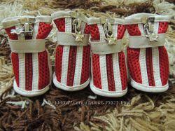 кроссовочки для Вашего любимца
