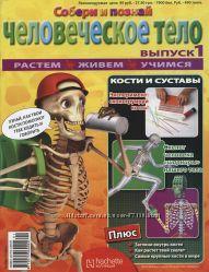 Детский журнал Тело Человека, выпуск 6